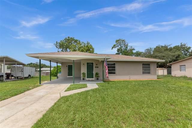 1017 Cobblestone Drive, Spring Hill, FL 34606 (MLS #W7835088) :: Team Pepka