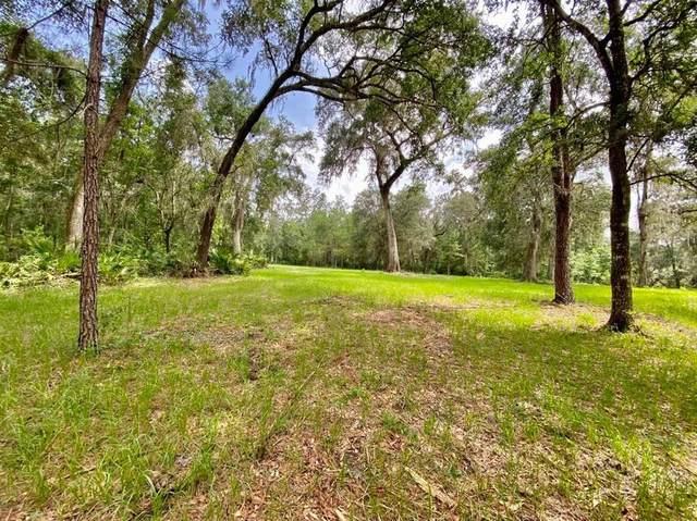 0 Chesaco Road, Brooksville, FL 34602 (MLS #W7835099) :: Frankenstein Home Team