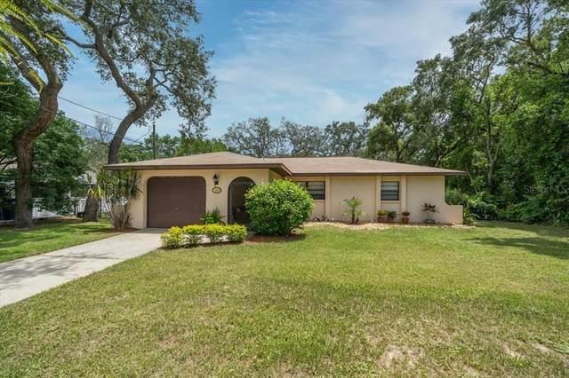 6260 Newmark Street, Spring Hill, FL 34609 (MLS #W7835142) :: Prestige Home Realty