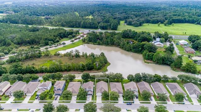 4560 Lisette Circle, Brooksville, FL 34604 (MLS #W7835143) :: Prestige Home Realty