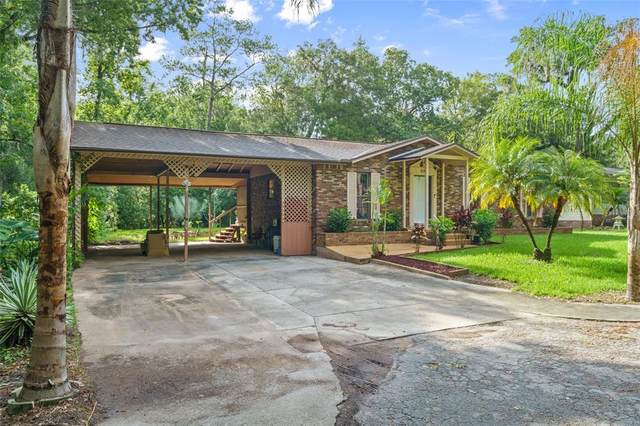 330 Palm Lane, Brooksville, FL 34601 (MLS #W7835161) :: The Home Solutions Team | Keller Williams Realty New Tampa