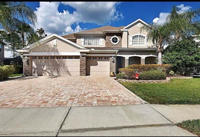 23435 Vistamar Court, Land O Lakes, FL 34639 (MLS #W7835170) :: Alpha Equity Team