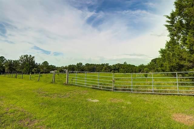 6489 Quarterhorse Lane, Brooksville, FL 34604 (MLS #W7835222) :: GO Realty