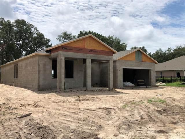 12724 Seronera Valley Court, Spring Hill, FL 34610 (MLS #W7835309) :: Cartwright Realty