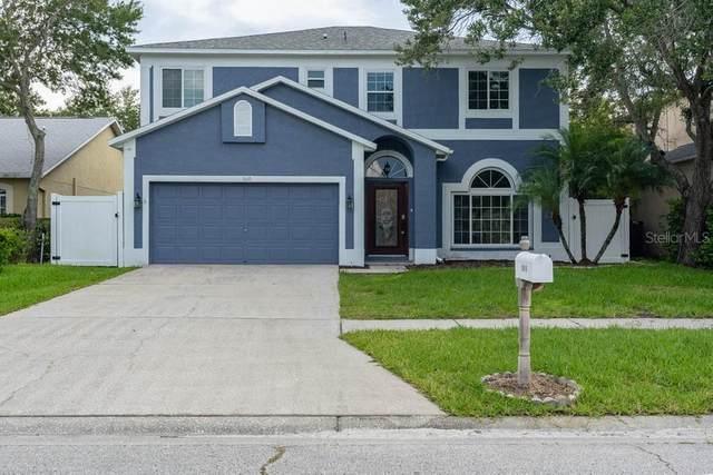 1610 Gray Bark Drive, Oldsmar, FL 34677 (MLS #W7835345) :: RE/MAX Marketing Specialists