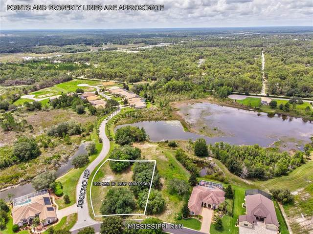 Mississippi Run, Weeki Wachee, FL 34613 (MLS #W7835369) :: The Curlings Group