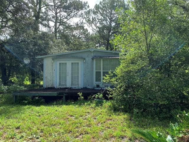 18240 Oaklawn Drive, Spring Hill, FL 34610 (MLS #W7835435) :: Cartwright Realty
