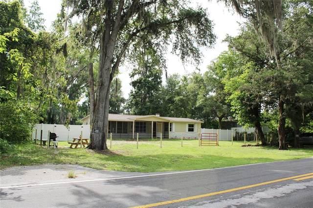 7200 Cedar Lane, Brooksville, FL 34601 (MLS #W7835460) :: Bustamante Real Estate