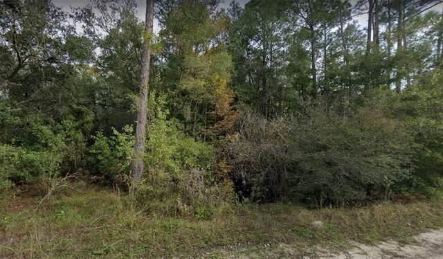 Coral Rock Drive, Webster, FL 33597 (MLS #W7835490) :: Zarghami Group