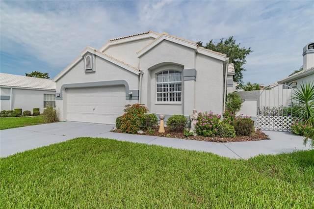 1025 Castille Drive, Spring Hill, FL 34608 (MLS #W7835576) :: Zarghami Group