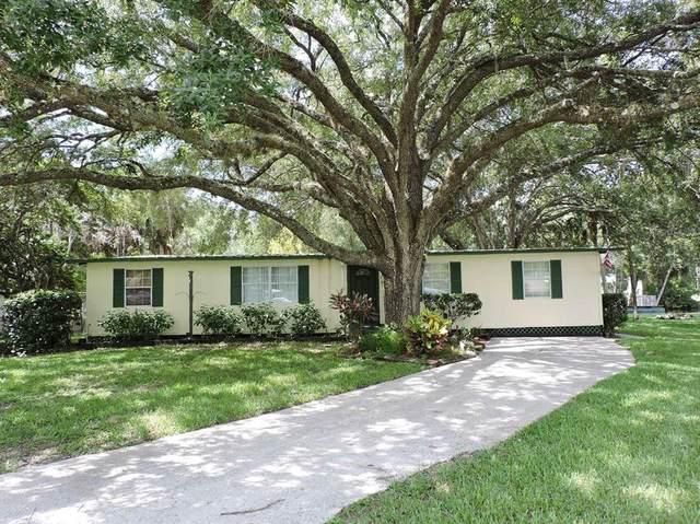 6134 Island Drive, Weeki Wachee, FL 34607 (MLS #W7835652) :: Zarghami Group