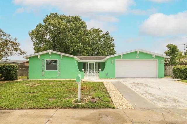 9022 Chatam Lane, Port Richey, FL 34668 (MLS #W7835701) :: Zarghami Group