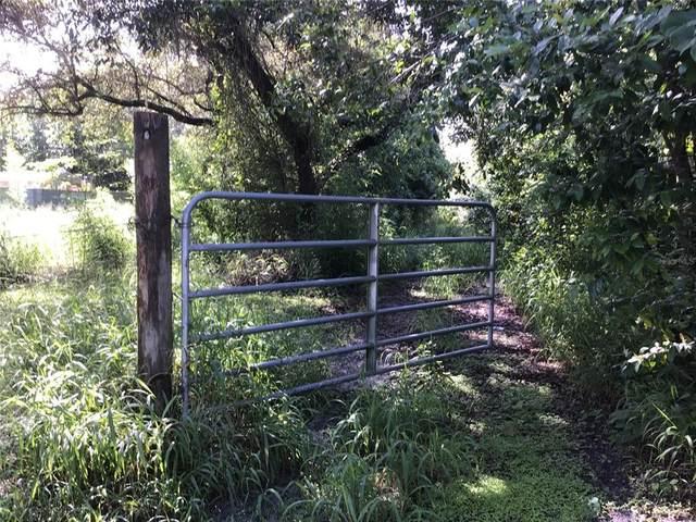Randee, New Port Richey, FL 34654 (MLS #W7835754) :: Everlane Realty