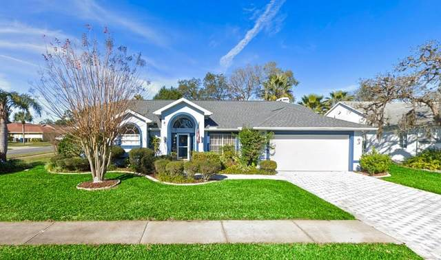 10279 Rayburn Court, Spring Hill, FL 34608 (MLS #W7835761) :: Zarghami Group