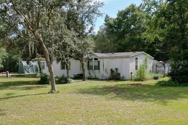 29213 Saddle Oaks Lane, Brooksville, FL 34602 (MLS #W7835779) :: Zarghami Group