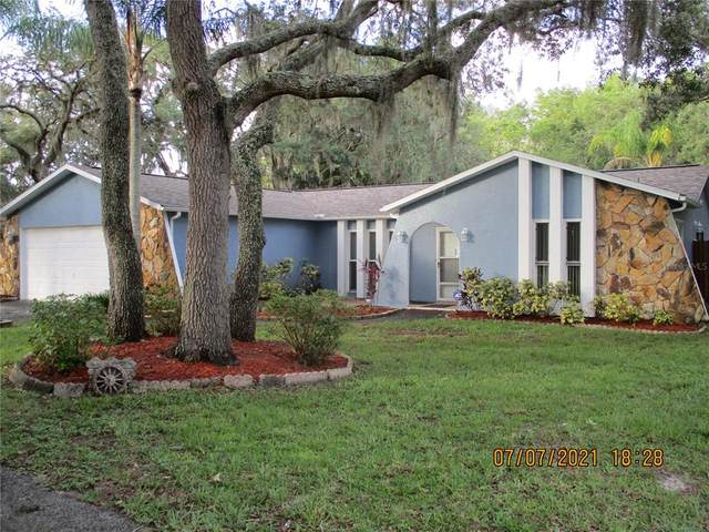 10045 Lakeview Drive, New Port Richey, FL 34654 (MLS #W7835805) :: Prestige Home Realty