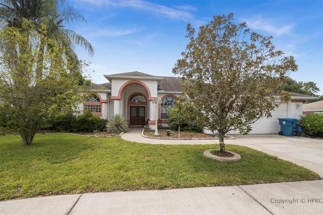 10220 Spring Hill Drive, Spring Hill, FL 34608 (MLS #W7835823) :: Rabell Realty Group