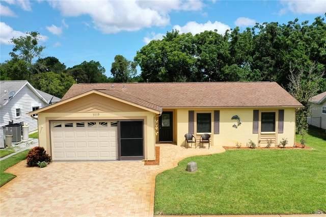 8119 Roxboro Drive, Hudson, FL 34667 (MLS #W7835846) :: Zarghami Group