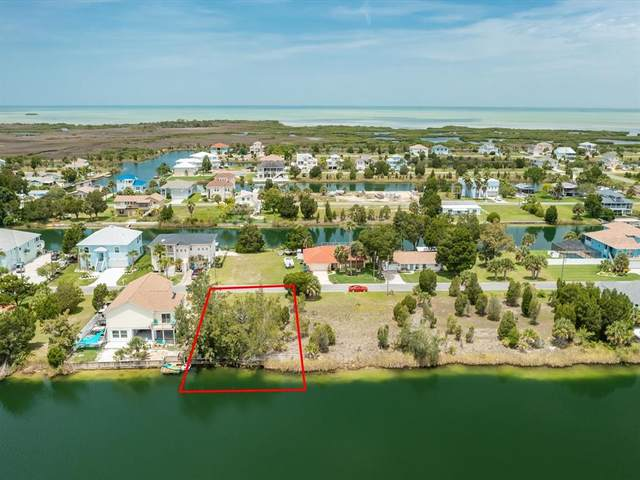 3230 Hibiscus Drive, Hernando Beach, FL 34607 (MLS #W7835850) :: RE/MAX Elite Realty