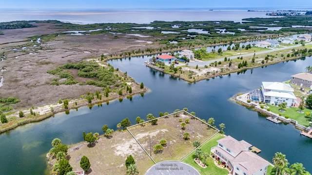 0 Gardenia Drive, Hernando Beach, FL 34607 (MLS #W7835858) :: Zarghami Group