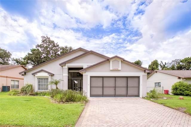 13411 Rome Drive, Bayonet Point, FL 34667 (MLS #W7835906) :: Zarghami Group