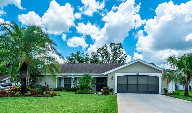 8804 Avondale Lane, Hudson, FL 34667 (MLS #W7836009) :: CGY Realty