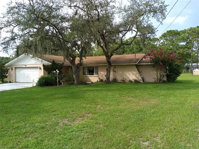 11600 Osceola Drive, New Port Richey, FL 34654 (MLS #W7836023) :: Sarasota Gulf Coast Realtors