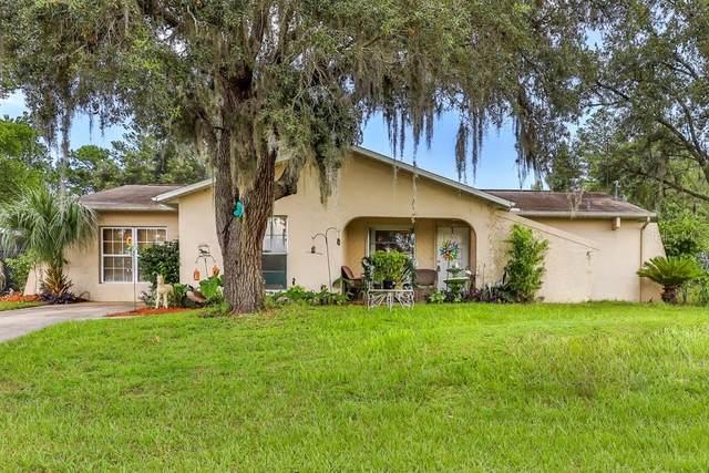 10319 Lynnhaven Road, Spring Hill, FL 34608 (MLS #W7836049) :: Bridge Realty Group
