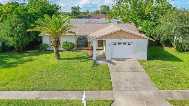 3052 Salton Street, Holiday, FL 34691 (MLS #W7836080) :: Delgado Home Team at Keller Williams
