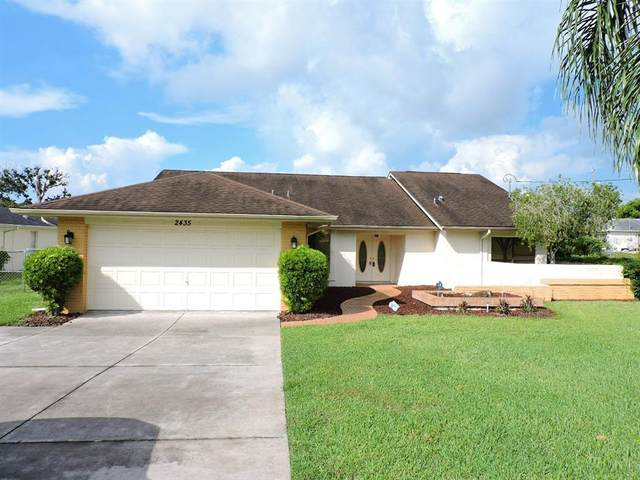 2435 Sonnet Avenue, Spring Hill, FL 34609 (MLS #W7836081) :: Realty Executives
