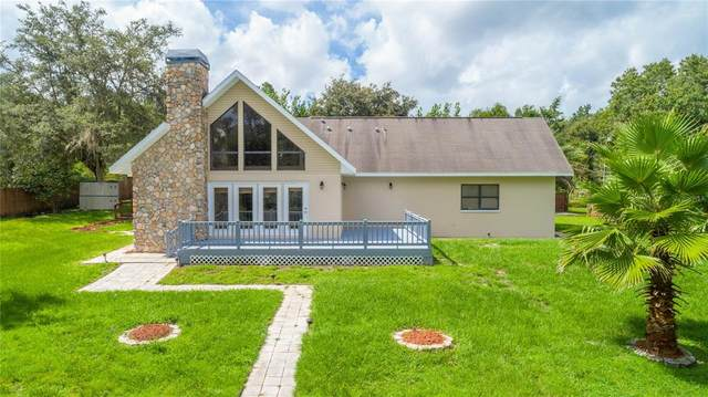 22093 Carr Creek Drive, Brooksville, FL 34602 (MLS #W7836083) :: Zarghami Group