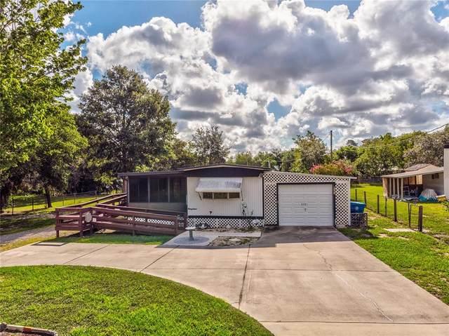 8361 Yellow Pine Avenue, Brooksville, FL 34613 (MLS #W7836097) :: Zarghami Group