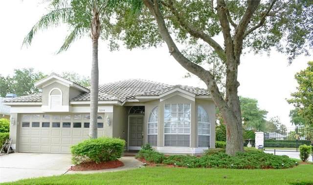 9244 Souchak Drive, Trinity, FL 34655 (MLS #W7836102) :: Zarghami Group