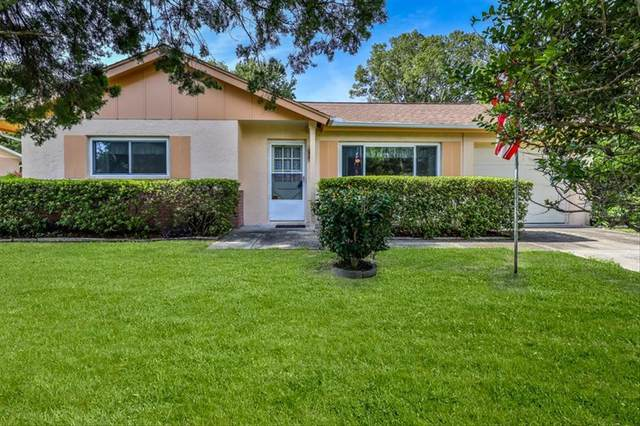 7294 Tranquil Drive, Spring Hill, FL 34606 (MLS #W7836107) :: Prestige Home Realty