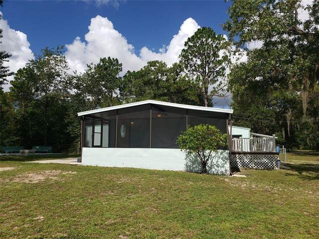 3168 N Chameleon Point, Crystal River, FL 34428 (MLS #W7836121) :: Zarghami Group