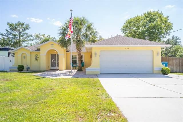 11303 Lapwing Road, Weeki Wachee, FL 34614 (MLS #W7836130) :: Keller Williams Realty Select