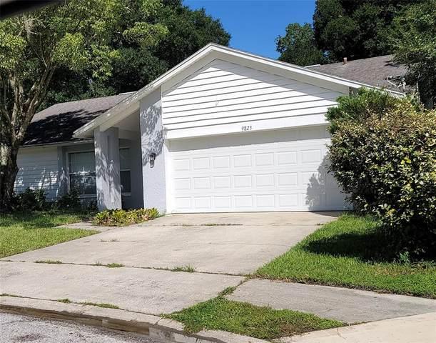 9823 Lema Court, New Port Richey, FL 34655 (MLS #W7836137) :: Zarghami Group