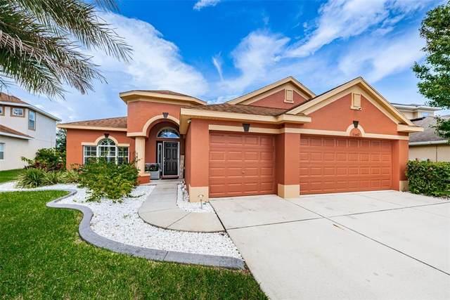 11442 Tayport Loop, New Port Richey, FL 34654 (MLS #W7836138) :: Aybar Homes