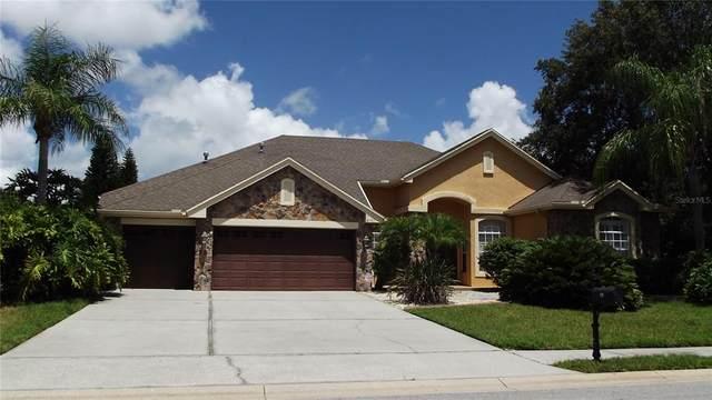 2151 Edelweiss Loop, Trinity, FL 34655 (MLS #W7836140) :: Zarghami Group