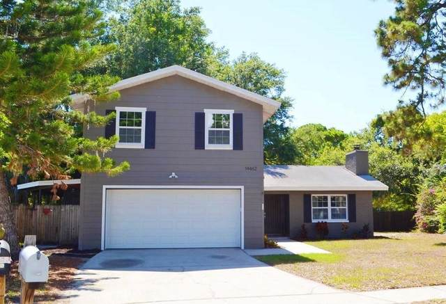 14462 91ST Avenue, Seminole, FL 33776 (MLS #W7836160) :: Zarghami Group
