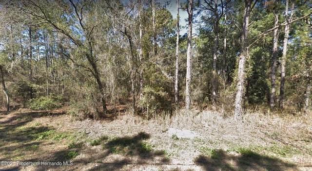 Oakcrest Circle, Brooksville, FL 34604 (MLS #W7836185) :: Everlane Realty