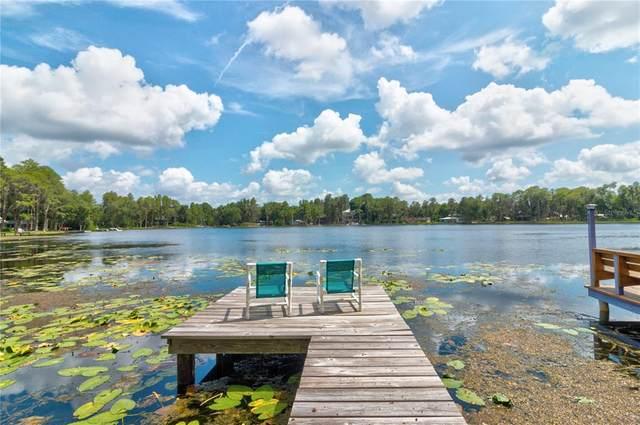 14630 Bluestone Lane, Odessa, FL 33556 (MLS #W7836191) :: Vacasa Real Estate