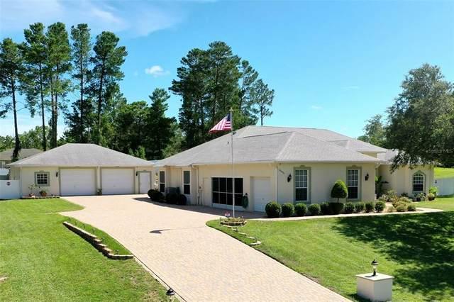 10496 Calico Warbler Avenue, Brooksville, FL 34613 (MLS #W7836192) :: Zarghami Group