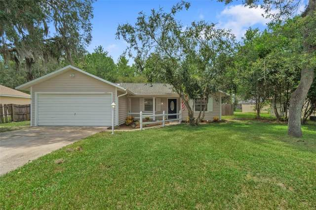12423 Drysdale Street, Spring Hill, FL 34609 (MLS #W7836209) :: Vacasa Real Estate