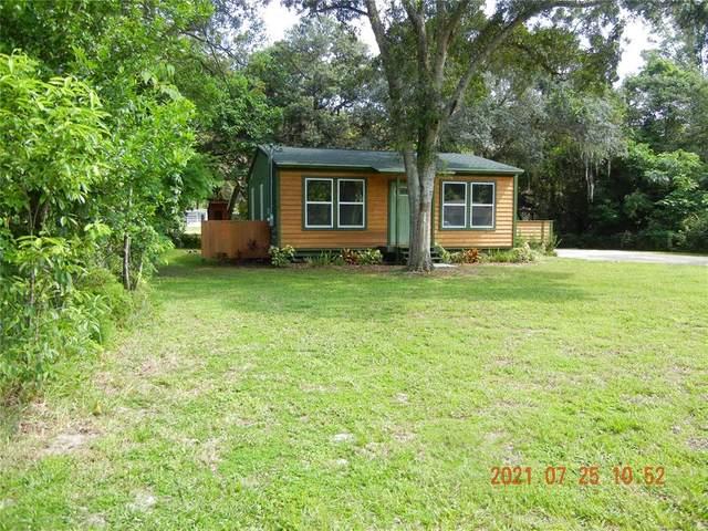 11939 Bethwood Avenue, New Port Richey, FL 34654 (MLS #W7836221) :: Century 21 Professional Group