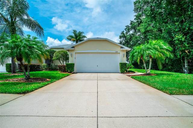 11647 Foxworth Lane, New Port Richey, FL 34654 (MLS #W7836224) :: Memory Hopkins Real Estate