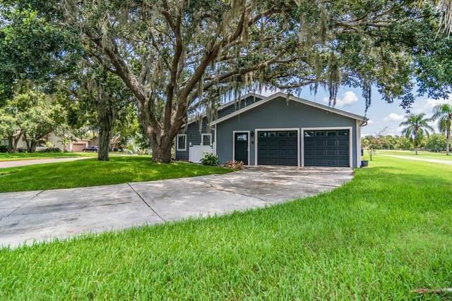 430 Forest Park Road, Oldsmar, FL 34677 (MLS #W7836231) :: Pristine Properties
