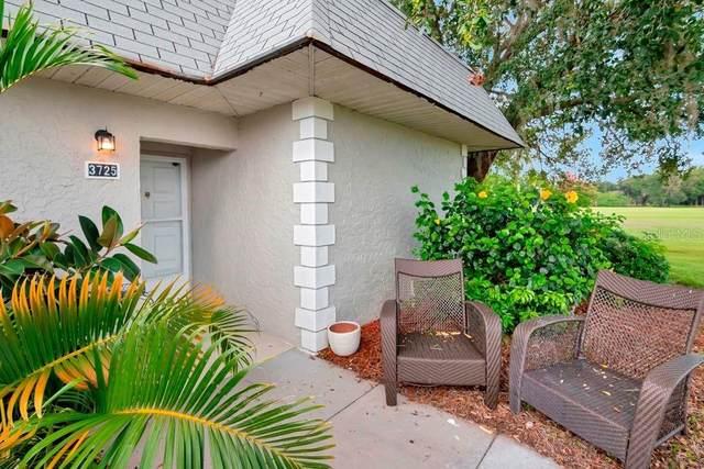 3725 Teeside Drive #1, New Port Richey, FL 34655 (MLS #W7836236) :: Godwin Realty Group