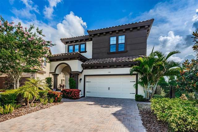 1585 Marinella Drive, Palm Harbor, FL 34683 (MLS #W7836248) :: Vacasa Real Estate