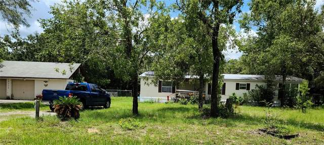 17705 Oxenham Avenue, Spring Hill, FL 34610 (MLS #W7836260) :: Zarghami Group